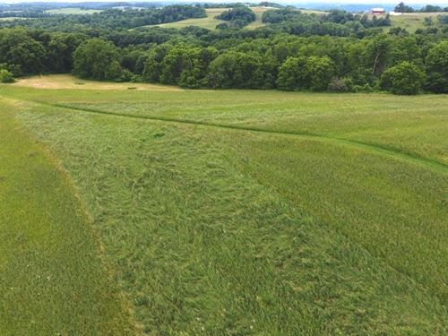 Organic Land For Sale : Wauzeka : Crawford County : Wisconsin