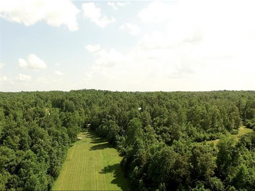 Private 29.48 Acres Ml : Decaturville : Decatur County : Tennessee