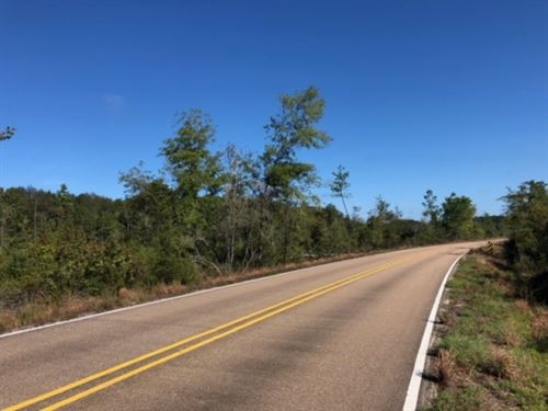 75 Acres/ Enon / Louisiana : Franklinton : Washington Parish : Louisiana