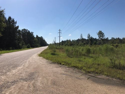 17 Acres / Sandstone Blvd : Franklinton : Washington Parish : Louisiana
