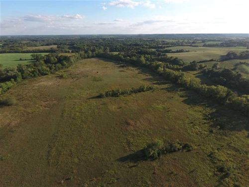Reduced, 80 Acre Crp And Hunting : Tina : Carroll County : Missouri
