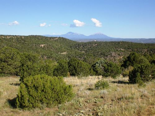 Santa Fe Trail Ranch Mountain : Trinidad : Las Animas County : Colorado