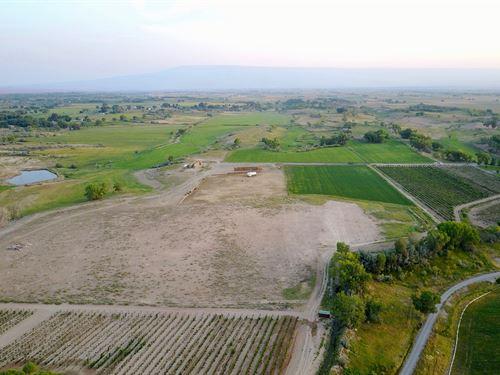 Colorado 18-Acre Lot Irrigation : Olathe : Montrose County : Colorado