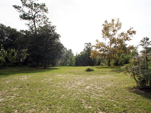 17 Acres Lake City, Florida : Lake City : Columbia County : Florida