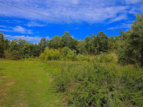 Land For Sale in The Ozarks : Doniphan : Ripley County : Missouri