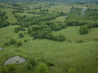 Southern Missouri Cattle Ranch : Wasola : Ozark County : Missouri