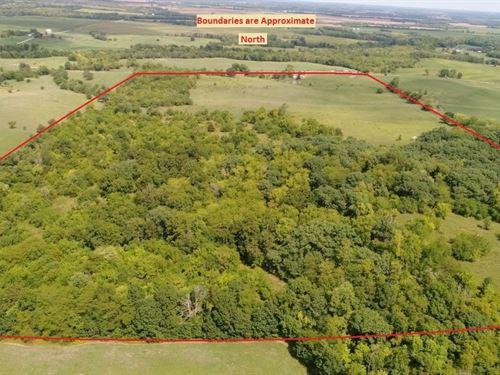 80 Ac Pasture, Timber, Two Ponds : Weatherby : Daviess County : Missouri