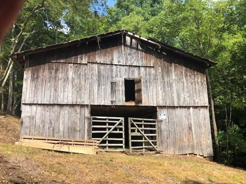 Gorgeous Lot Williamson County : Primm Springs : Williamson County : Tennessee