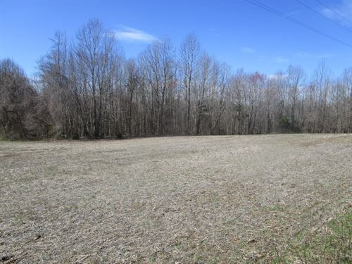 35.13 Ac, Farming, Hunting : Kenbridge : Lunenburg County : Virginia