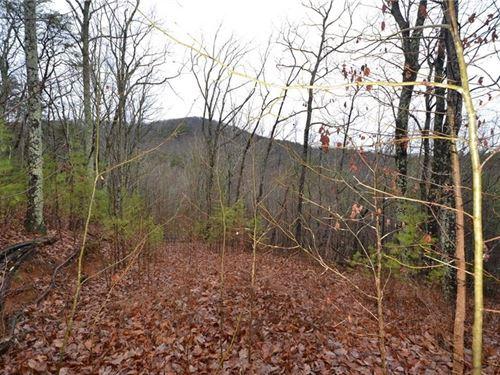 80+ Acres, Pickens County, Jasper : Jasper : Pickens County : Georgia