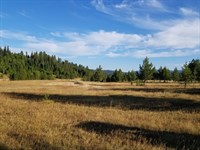 Elk City Idaho Land, Recreational : Elk City : Idaho County : Idaho