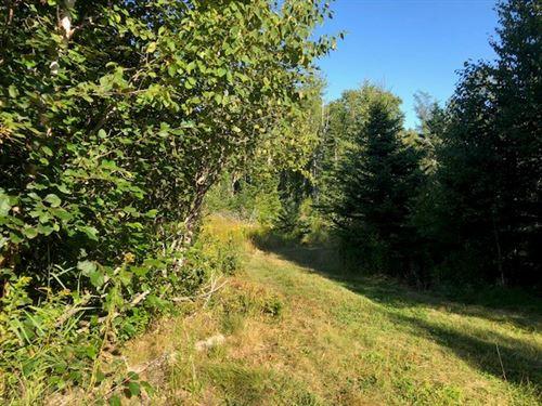 Coastal Land, Deeded Beach Access : Lubec : Washington County : Maine