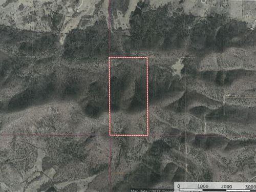 80 Acres Talihina Creek, Meadows : Talihina : Pushmataha County : Oklahoma