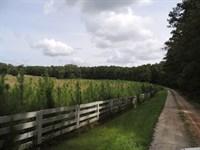 71.6 Ac At 4830 Gordon Road : Senioa : Coweta County : Georgia