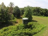 286 Acres, Hunting Property, Tro : Reynolds Station : Hancock County : Kentucky