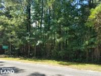 Hudson Mill Community Lot/Acreage : Elba : Coffee County : Alabama