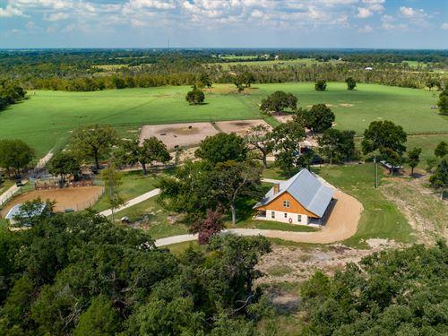 Bar F Rodeo Genetics, Active : Canton : Van Zandt County : Texas