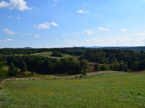 Farm Land at Auction in Floyd VA : Floyd : Virginia