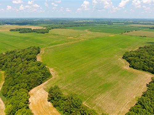 Farmland Auction In Illinois : Mount Vernon : Jefferson County : Illinois