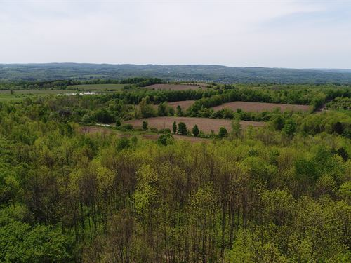 Sloping Land Site Great For A Home : Manlius : Onondaga County : New York