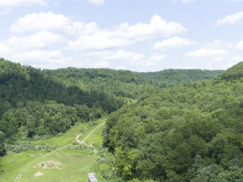 Prime Hunting Land In Ky : Liberty : Casey County : Kentucky