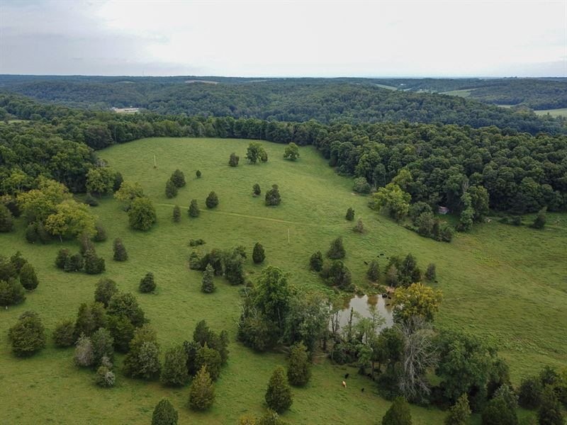 Dry Creek Rd, 125 Acres : Newark : Licking County : Ohio