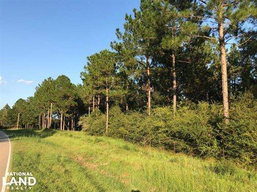Rocky Branch Road Residential Prope : Sumrall : Lamar County : Mississippi