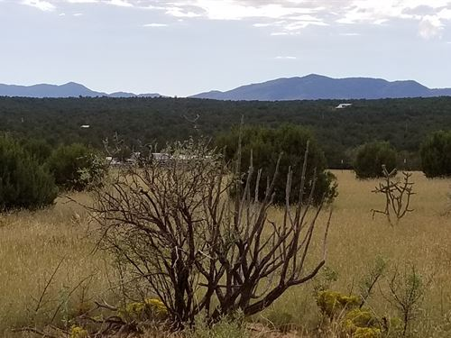 36 Acre Home Site Manzano Foothills : Estancia : Torrance County : New Mexico