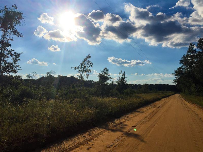 Delray Drive West Tract : North : Orangeburg County : South Carolina