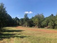 Little Cedar Creek Estate : Gray : Jones County : Georgia