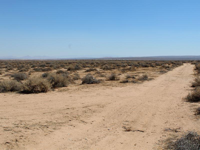 Mecca Of Man Land : Kramer Junction : San Bernardino County : California