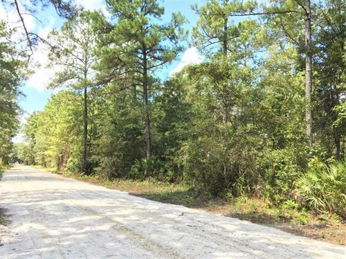 6.53 Acre Home Site For Sale in Ki : Kingsland : Camden County : Georgia