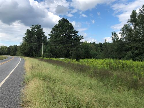 Timberland Home Site Potential : Gurdon : Clark County : Arkansas