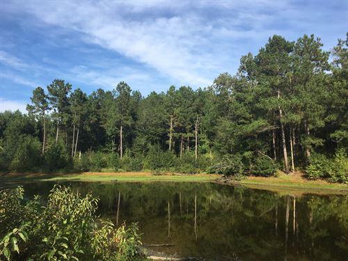 Large Pine Land Property Camp : Reader : Nevada County : Arkansas
