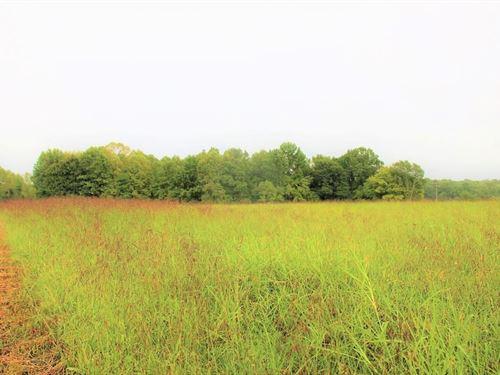 Celina, Tn / Hay Field / Timberland : Celina : Clay County : Tennessee