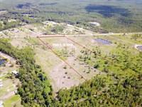 Timber Ridge Tract 4 : Bryceville : Nassau County : Florida