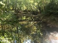 Yellowleaf Creek Homesites & Timber : Chelsea : Shelby County : Alabama