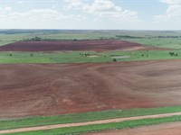 1,300 Acres Multiple Tracts : Grandfield : Oklahoma County : Oklahoma