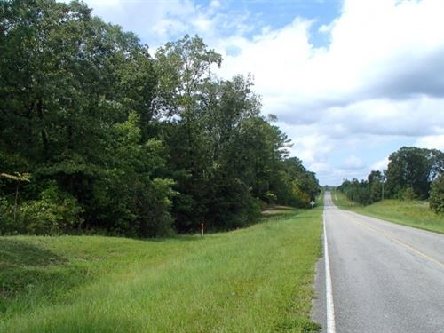 25 Acres In Winston County, Ms : Louisville : Winston County : Mississippi