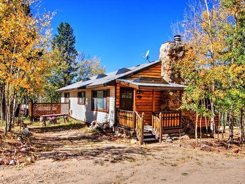 Cozy Mountain Cabin Paved County : Cripple Creek : Teller County : Colorado