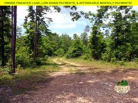 Large Parcel Near Pioneer Forest : Raymondville : Texas County : Missouri