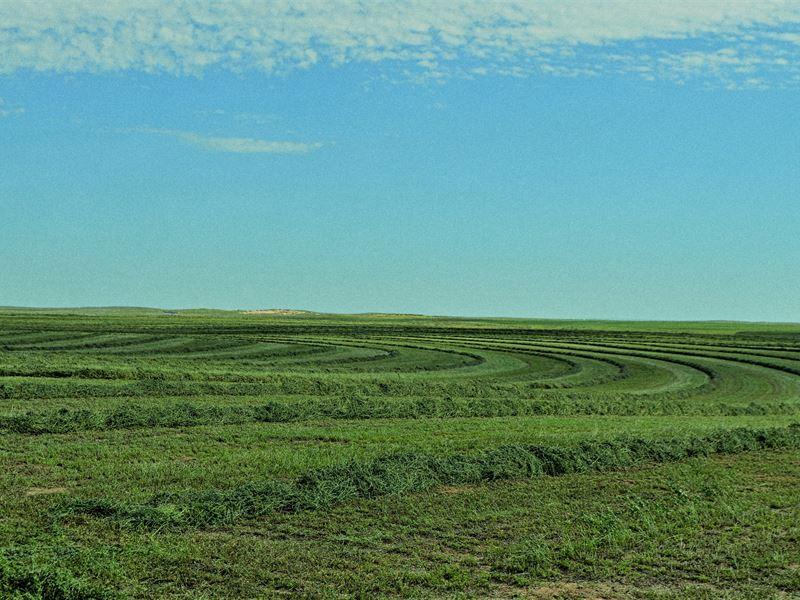 Sterrett Farms : Keyes : Cimarron County : Oklahoma