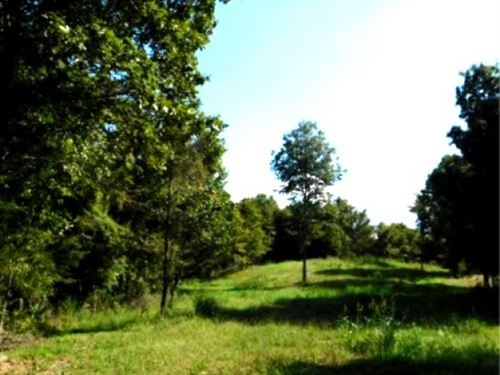 156.7 Acres In Yazoo County In Yazo : Yazoo City : Yazoo County : Mississippi