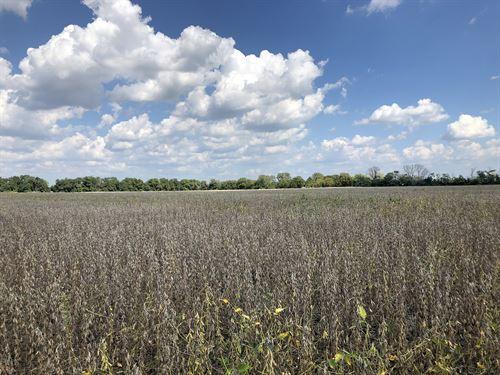 Land Auction In Indiana : Cambridge City : Wayne County : Indiana