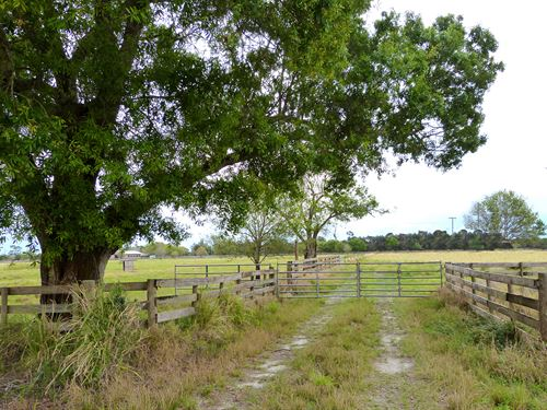 5Ac Agricultural Lot On Paved Road : Fort Pierce : Saint Lucie County : Florida