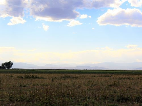 Windsor Lot 30 Acres : Windsor : Weld County : Colorado
