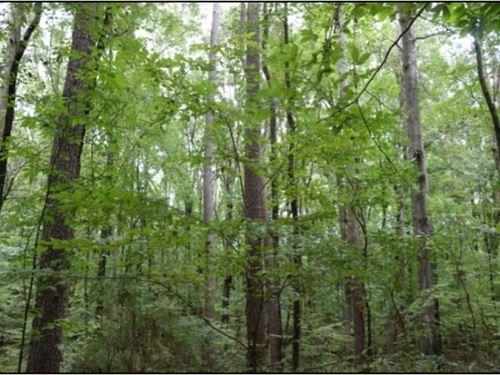 12.84 Acres In Noxubee County : Macon : Noxubee County : Mississippi