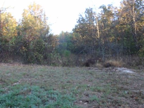Hunting / Recreational 41+ Acres : De Kalb : Red River County : Texas