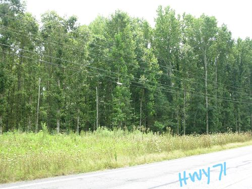 Timberland Auction 378 Acres 11 : Dutton : Jackson County : Alabama