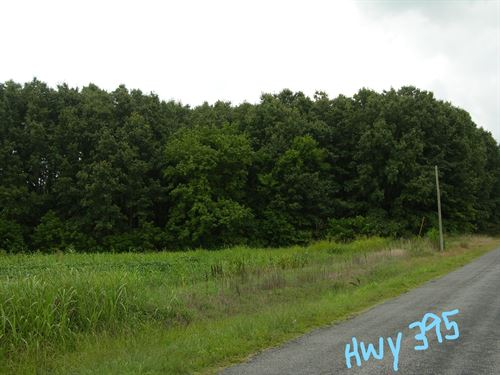 Timberland Auction 378 Acres 9 11 : Dutton : Jackson County : Alabama